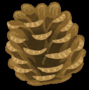 matsubokkuri